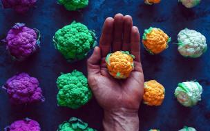 цветная, капуста, кочанчики