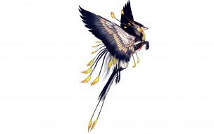 рисованное, животные,  сказочные,  мифические, перья, когти, зверь, хвост, крылья