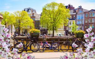 buildings, цветение, река, весна, Амстердам, canal
