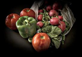 еда, овощи, снедь, томаты, помидоры