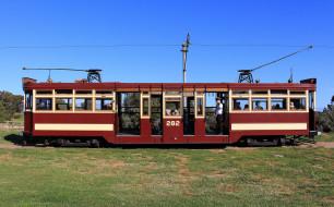 техника, трамваи, трамвай, рельсы