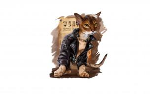стиль, куртка, кот