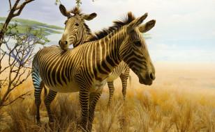 Золотые ворота, Сан-Франциско, парк, Калифорнийская академия наук, зебра, животные, картина