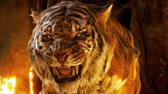 кино фильмы, the jungle book, the, jungle, book, tiger
