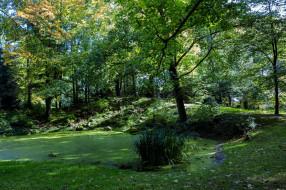 обои для рабочего стола 2048x1365 природа, лес, простор