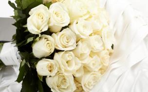 цветы, розы, flowers, белые, roses, букет, white