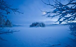 природа, зима, деревья, мороз, снег, вечер, луна