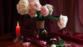 цветы, пионы, свеча, ваза, лепестки