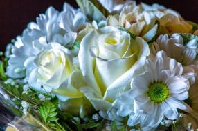 цветы, букеты,  композиции, белый