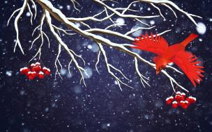 векторная графика, природа , nature, снег, праздник, минимализм, ветка, рябина, снежинки, зима, птица, фон