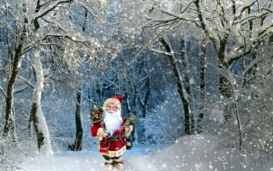 праздничные, дед мороз,  санта клаус, снег, лес, санта