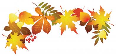 листья, фон, ягоды
