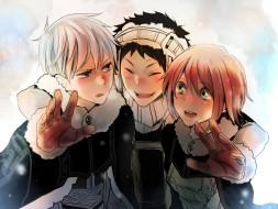 аниме, akagami no shirayukihime, друзья