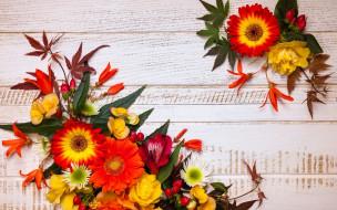 листья, autumn, wood, осень, композиция, leaves, floral, frame, flowers, цветы