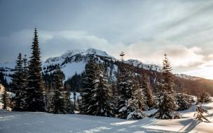 обои для рабочего стола 2560x1600 природа, зима, снег