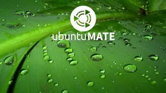 компьютеры, ubuntu linux, фон, логотип