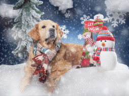 снеговики, снег, собака, снежинки, шарф