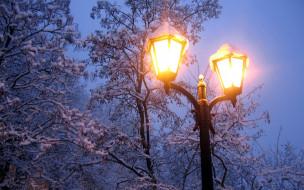 зима, деревья, вечер, мороз, природа, снег, свет, холод, ветки, фонарь