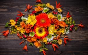 обои для рабочего стола 2880x1800 цветы, букеты,  композиции, autumn, flowers, wood, осень, листья, композиция, floral, leaves