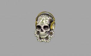 минимализм, скелет, цветы, голова, узоры, наушники, череп, светлый фон