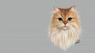 Smoothie cat, Anne Novik, кошка, арт, пушистик, кот