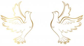 обои для рабочего стола 8000x4416 векторная графика, животные , animals, голуби