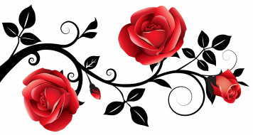 обои для рабочего стола 6308x3375 векторная графика, цветы , flowers, роза, лепестки, фон