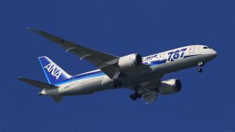 boeing 787, авиация, пассажирские самолёты, авиалайнер