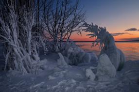 природа, зима, ontario, закат, залив, уайтфиш, whitefish, bay, canada, онтарио, озеро, верхнее, lake, superior, канада, снег, деревья