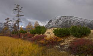 пейзаж, вид, край, красота, осень, горы, лес, природа, Kolyma