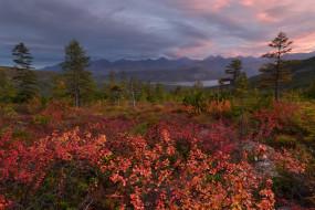 край, осень, природа, красота, Kolyma, река, вид, пейзаж