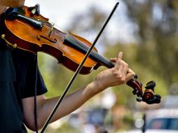 музыка, -музыкальные инструменты, скрипка, музыкант, скрипач