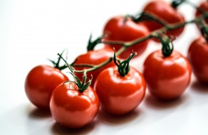 помидоры, томаты, ветка