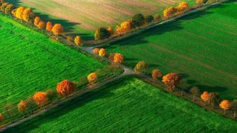 деревья, зелень, поля, осень, дороги