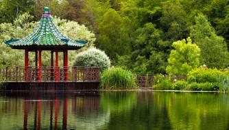 японский, сад, беседка, водоем