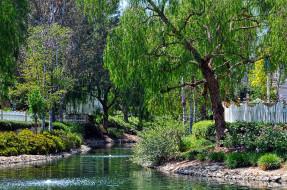 весна, река, деревья