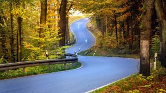 подъем, шоссе, поворот, осень