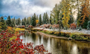 река, деревья, осень