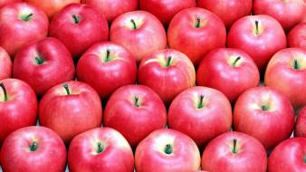 яблоки, розовые