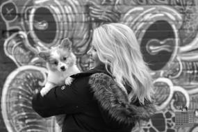 календари, животные, профиль, взгляд, 2018, девушка, собака