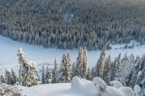природа, зима, простор