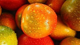 макро, томаты, помидоры, капли