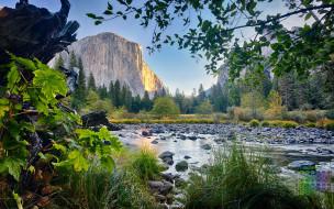 календари, природа, деревья, водоем, скала, 2018, растения