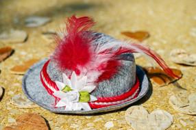 шляпа, перья