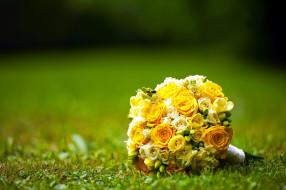 букет, кольца, бутоны, розы