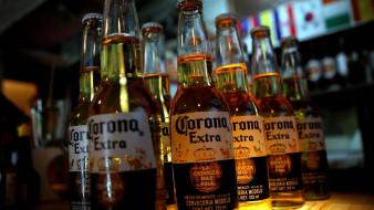 corona, бренды, бренды напитков , разное