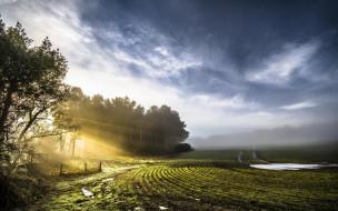 лучи, тучи, поле, изгородь, небо, лужи, деревья