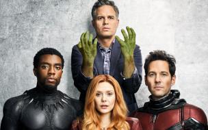 man, ant, witch, scarlet, hulk, panther, black