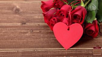 календари, праздники,  салюты, сердце, роза, 2018, цветы