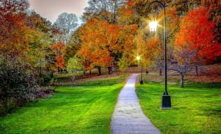 фонари, аллея, осень